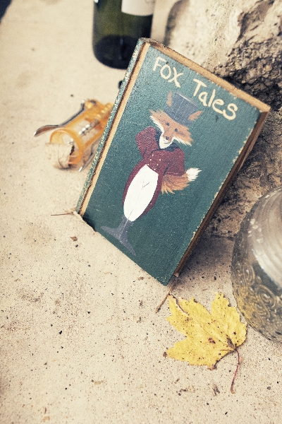 Fox Cabin Little Things